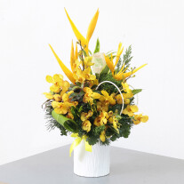 Yellow Orchids and Tropicals